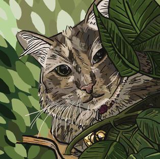 Digital Pet Portrait   Gigi
