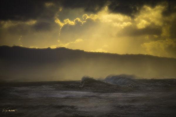 BLEND603_Oceans_13.jpg