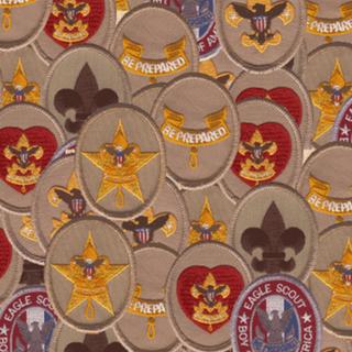 Boy-Scout-Advancement-1068x663.png