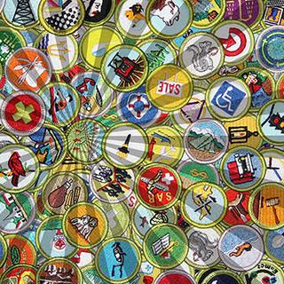 merit-badge-image.jpg