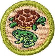 Reptile_&_Amphibian_Study_Merit_Badge.jp