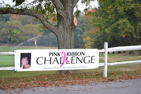 Pink Ribbon Challenge 2013 001.JPG