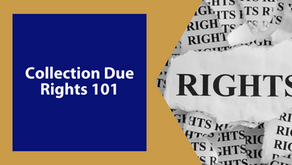 What Does It Mean? IRS Collection Due Process Rights 101