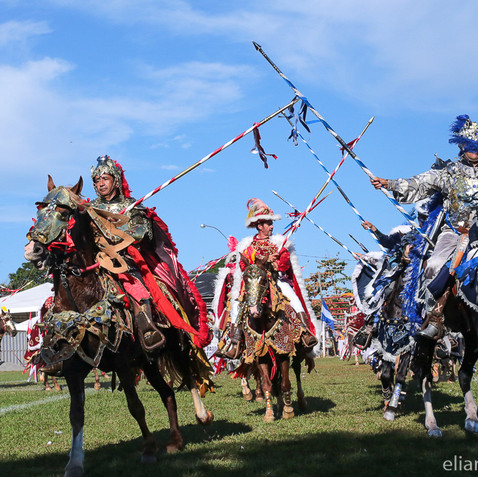 Festa do Divino - Jaraguá - EC (20).jpg