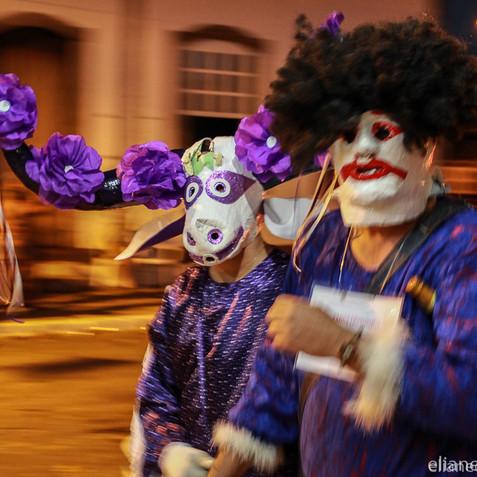 Festa do Divino - Jaraguá - EC (24).jpg
