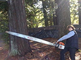 7 Foot Chainsaw
