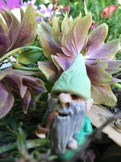 Mini Gnome green with pipe