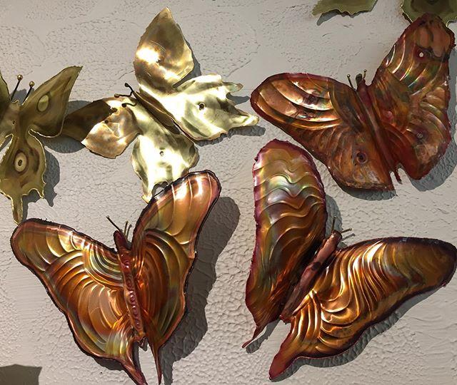 Brass and Copper Butterflies