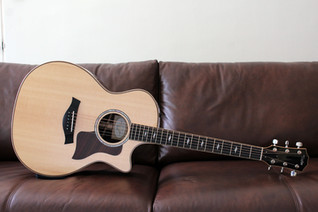 TAYLOR 814CE SITKA SPRUCE INDIAN ROSEWOOD