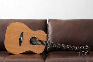 GOODALL RGC SITKA SPRUCE INDIAN ROSEWOOD