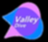valleydivelogo55.png