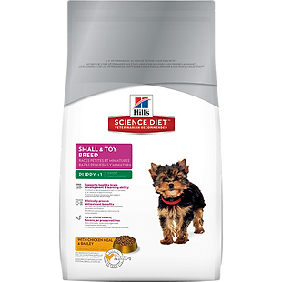 Yorkie Puppies For Sale now just like this one featured on the puppy food bag.