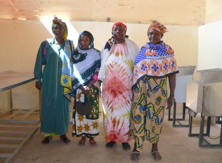 Enterprising Women, Developing Countries