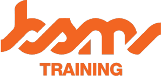 LOGO 1 BSM_TRAINING copy.png
