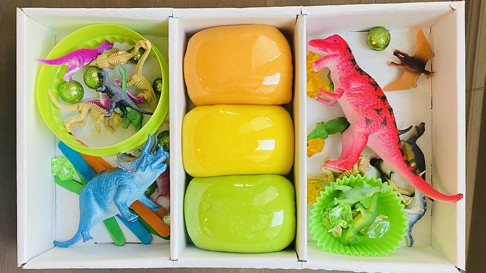 Large Dinosaur Kit