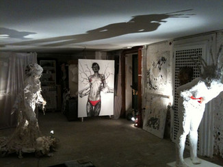 Aledima Exhibition Art Biennale 2011 Ven