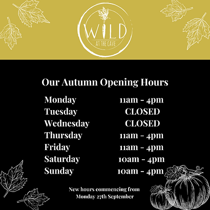 Copy of Autumn Opening Hours.png