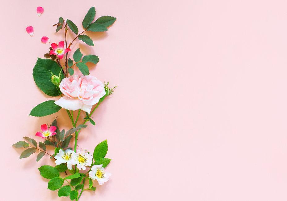 tender-background-with-roses-J4TU7ZB.jpg