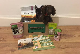 Free Puppy Welcome Box