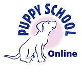 Logo online .jpg