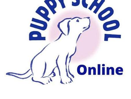 Puppy School and Super Pup Online Classes
