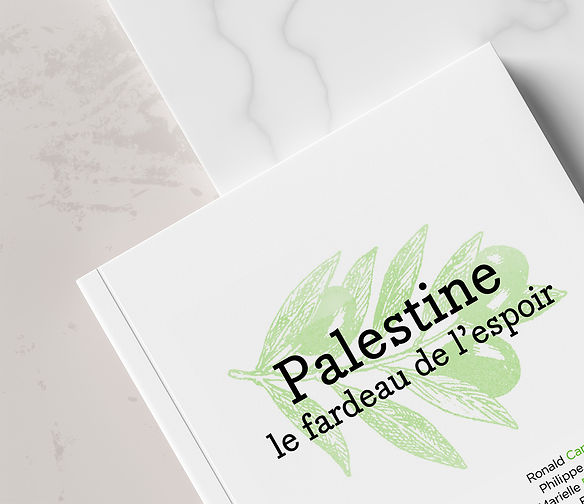 palestine-3D.jpg