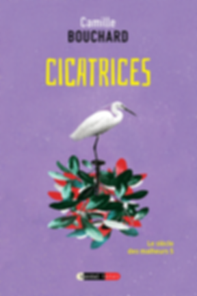 cicatrices_w.png