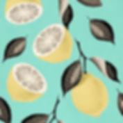 citron-square-2.jpg