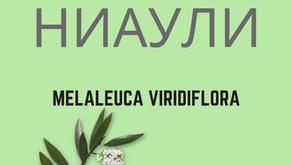 ГОМЕНОЛ, един от най-мощните растителни антисептици!