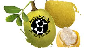 Растителните масла, 7 начина за употреба