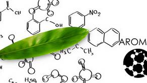 Как ни влияят ароматите или емоционална ароматерапия ?