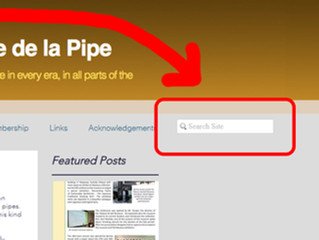 AIP website now with search function