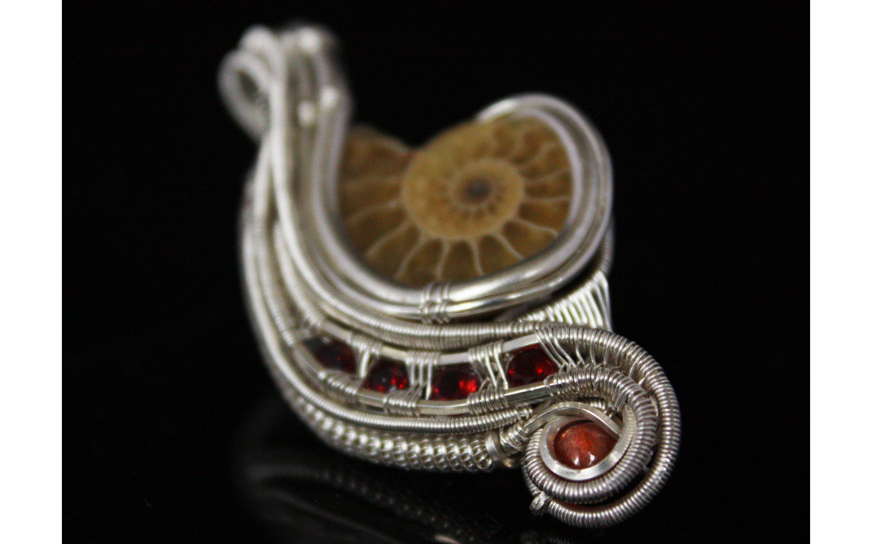 ammonitesunstone3.jpg