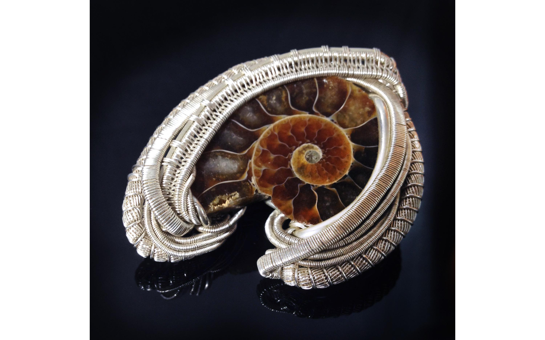 Ammonite3
