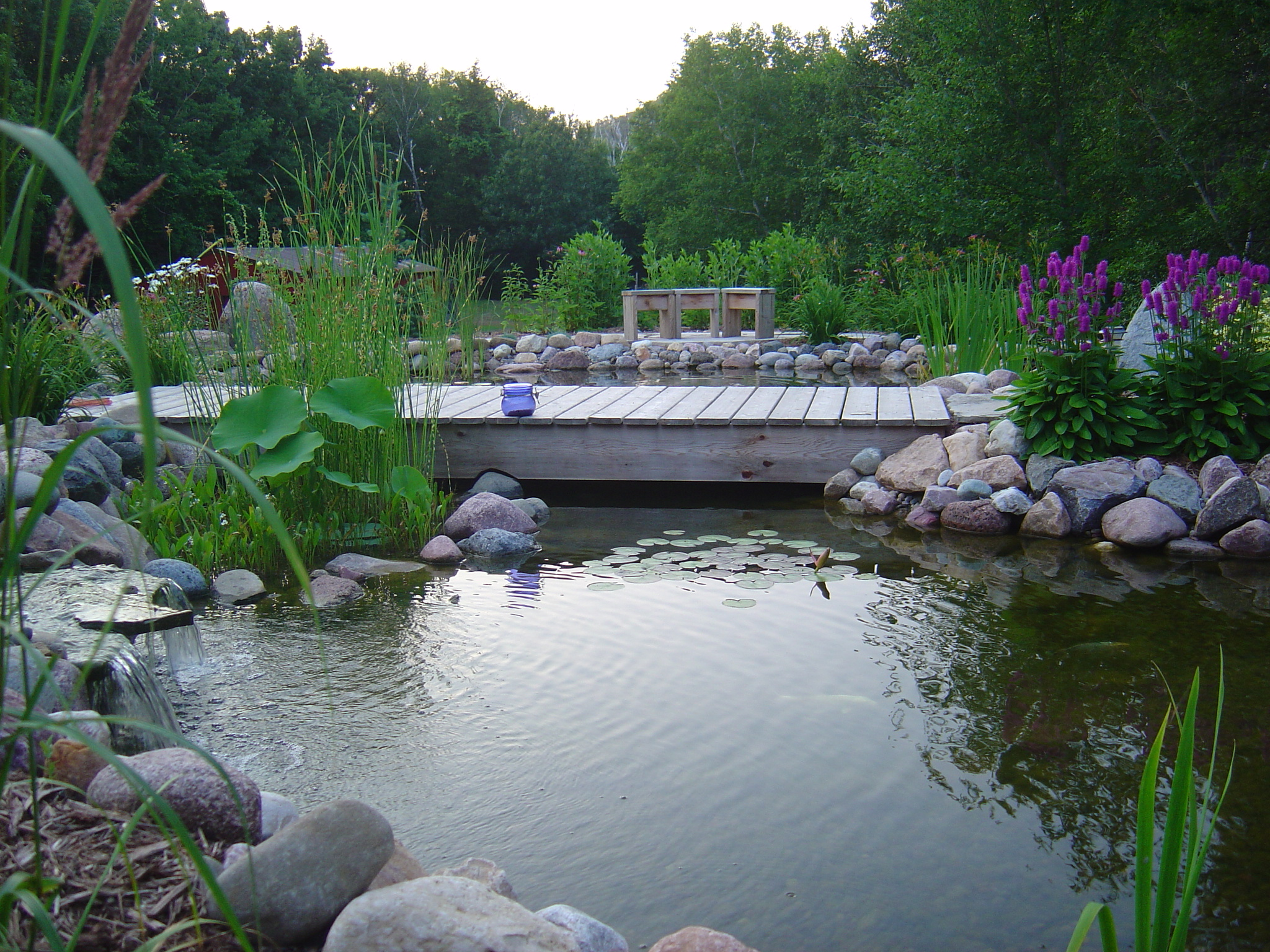 foot bridge over pond
