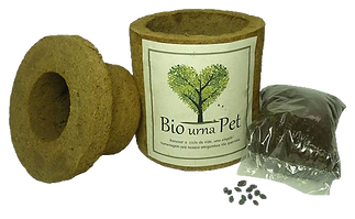 bio-urna-pet-para-cinzas-pequena-urna-ec
