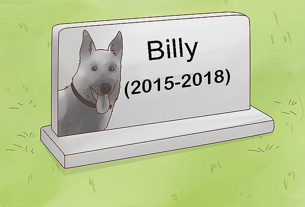 BURRY YOUR PET 12.jpg