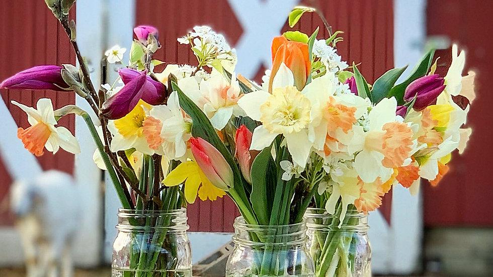 Cut Flower Garden Workshop - May 23 (2-4pm)