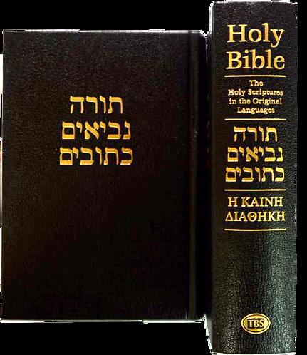 Hebrew & Greek Bible
