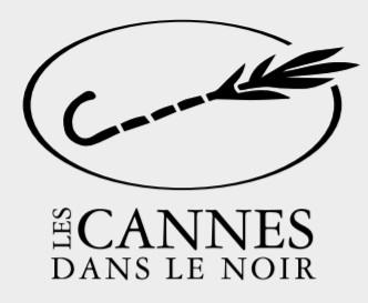 Cannes dans le Noir_edited.jpg