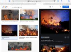 Suche nach Infos und Bildern im Internet