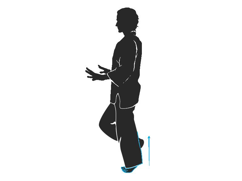ejercicio-terapéutico-funcional-piernas2-cuidaelcuerpo-mariano-maradei