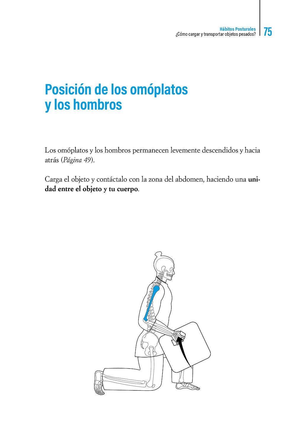    Libro Hábitos Posturales Posición de los omóplatos y los hombros