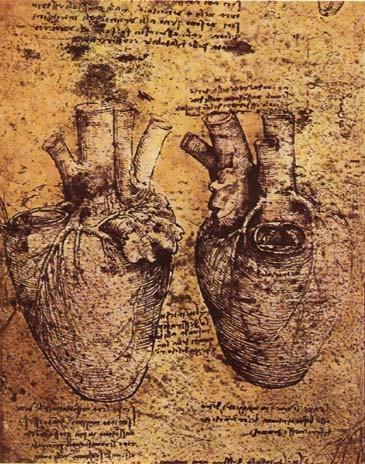 desenho de Leonardo da Vinci