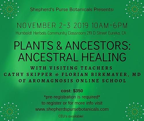 Plants & Ancestors: Ancestral Healing 2-day workshop