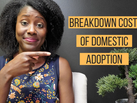 What Is The Cost Of A Domestic Adoption?