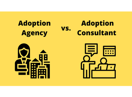 Adoption Agencies vs. Adoption Consultants