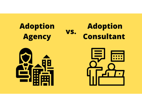 Adoption Agencies vs. Adoption Consultants