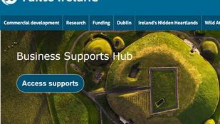 Fáilte Ireland's Strategic Tourism Business Continuity Scheme