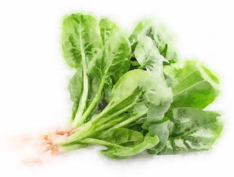 spinach 2.jpeg